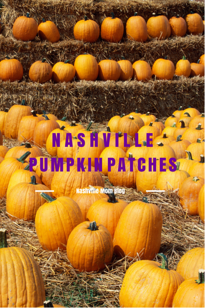 Tire Shops Open On Sunday >> Nashville area Pumpkin Patches | The Nashville Mom
